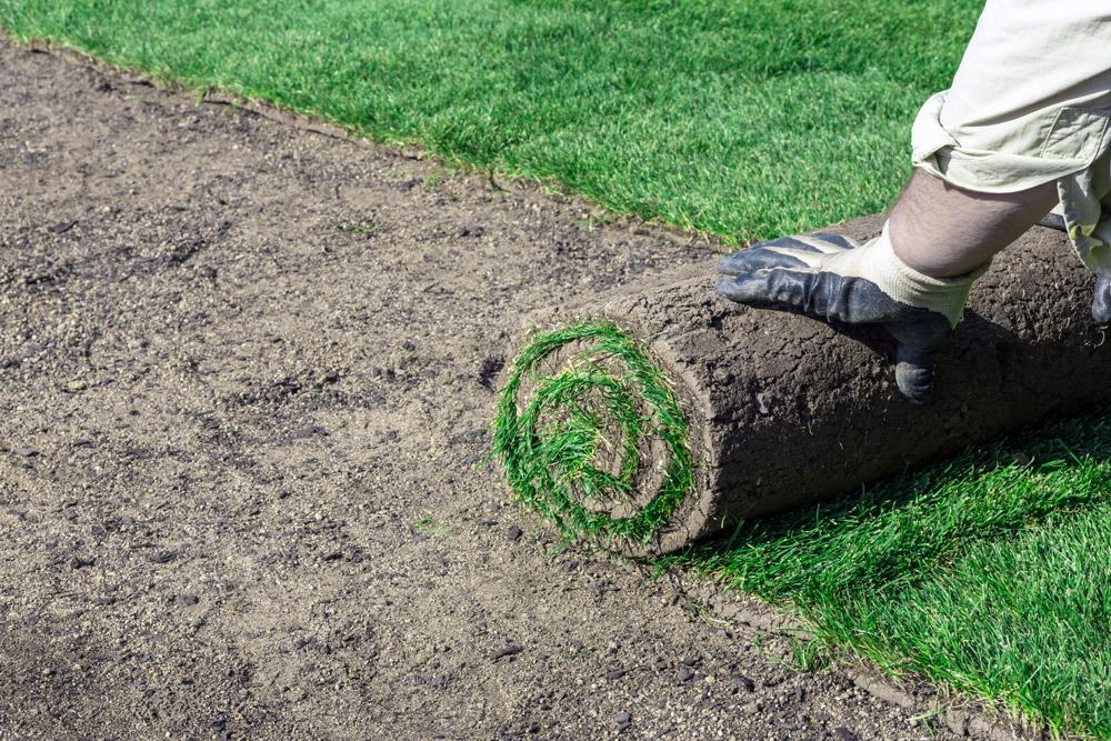 Благоустройство территории укладка газона